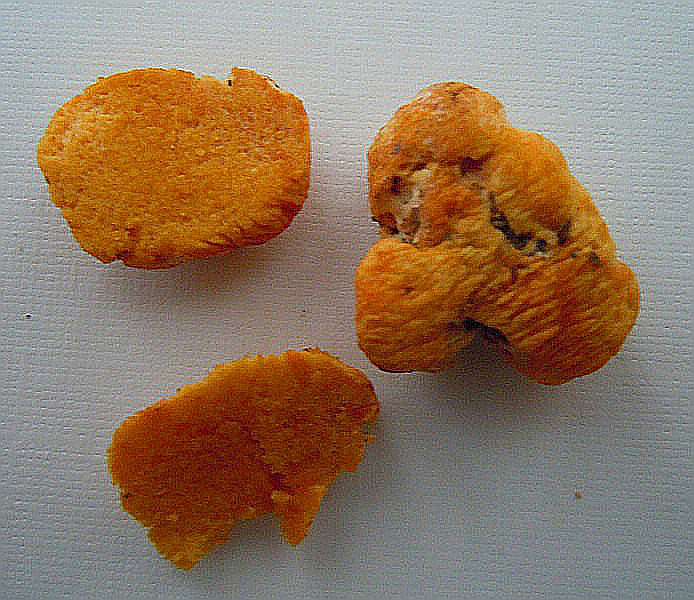 Stephanospora caroticolor (Berk.) Pat. (2).JPG